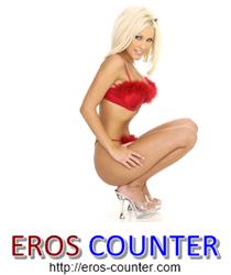 Eros Counter - Gratis Besucherzähler für Sexseiten